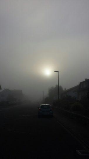 Überall Nebel. Wunderschön.