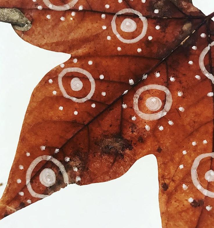 Ein Herbstblatt angemalt mit Tafelkreide