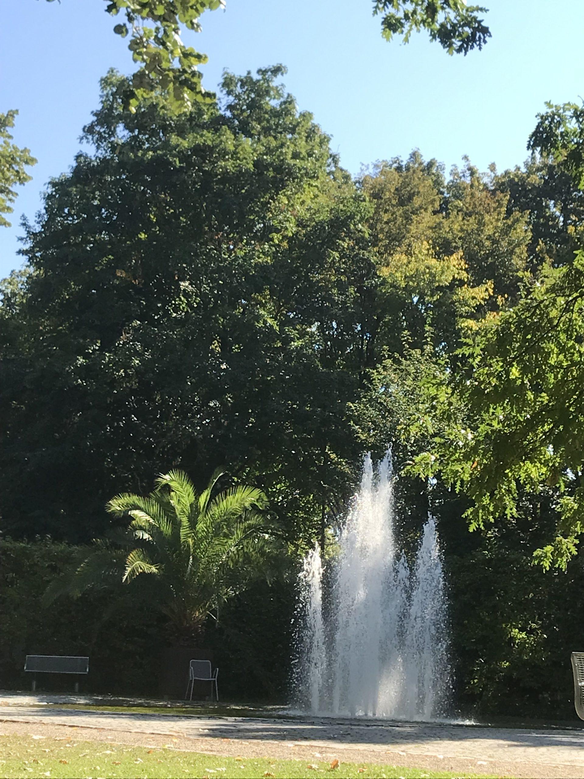 Wiese und ein Springbrunnen