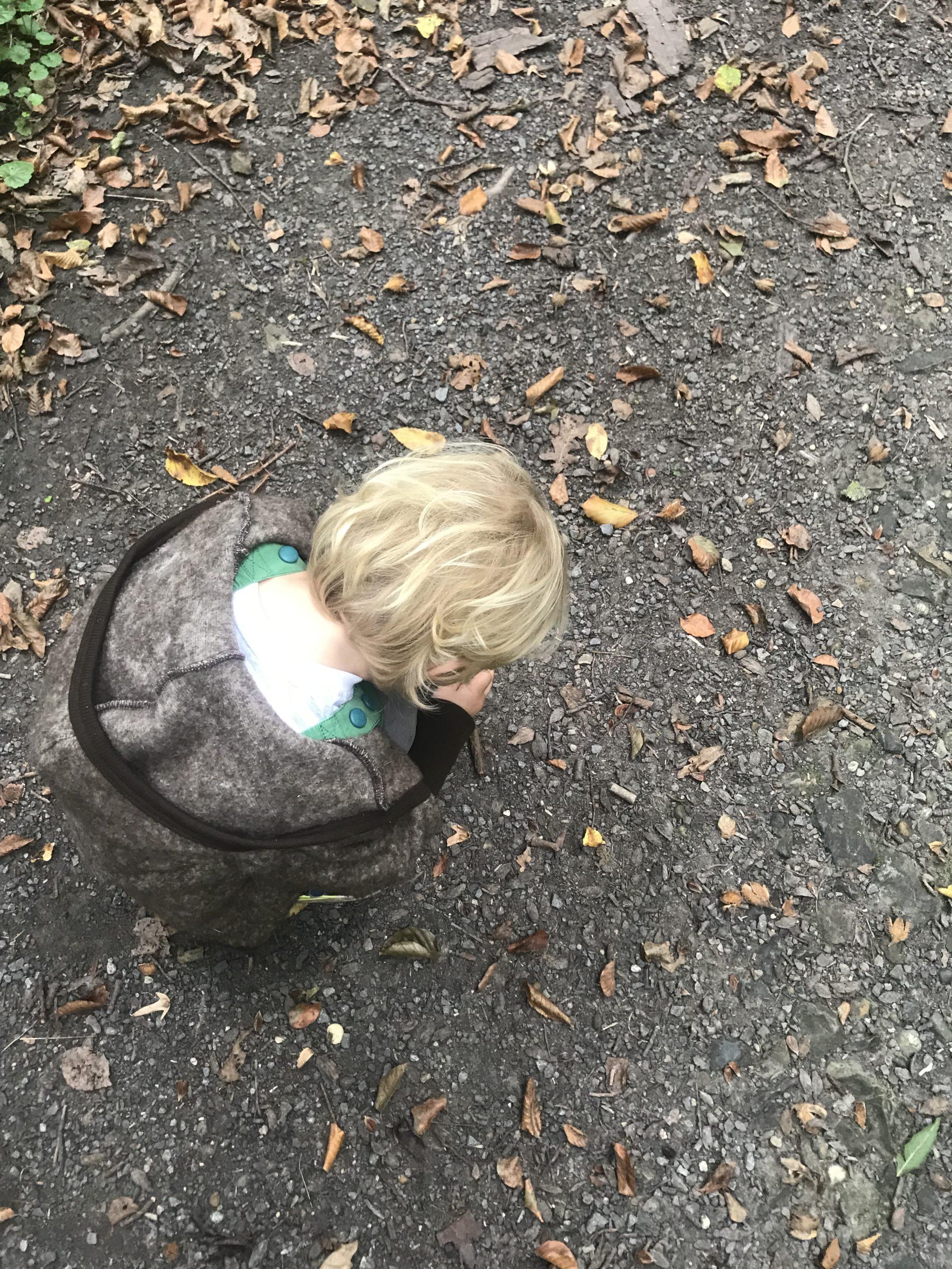 Das Januarwunder kniet auf dem Boden und sammelt Blätter